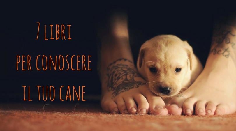 Migliori libri sui cani 7 titoli consigliati da leggere for Regalo libri gratis