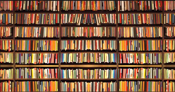 I libri pi belli del 2015 20 romanzi da leggere e for Bei romanzi da leggere