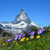 Libri sulla montagna