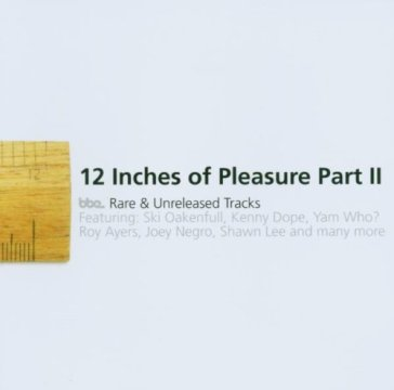 12 inches of pleasure vol.2