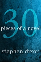 30 Pieces of a Novel