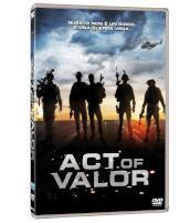 /Act-of-valor-DVD/Mike-McCoy-Scott-Waugh/ 803117993483