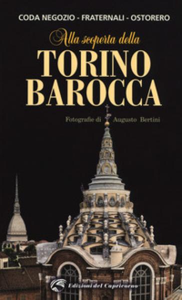 Alla scoperta della Torino barocca - Beatrice Coda Negozio pdf epub