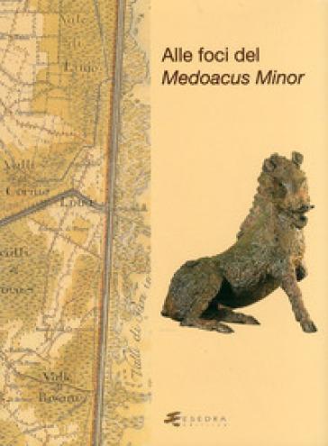 Alle foci del Medoacus minor - Simonetta Bonomi | Ericsfund.org