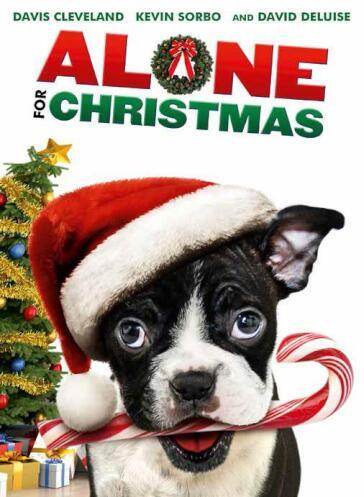 Alone For Christmas(1Dvd)