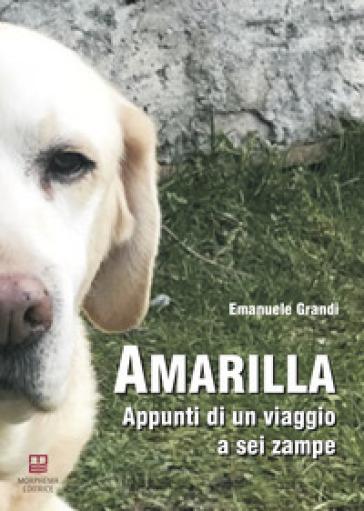Amarilla. Appunti di un viaggio a sei zampe - Emanuele Grandi | Jonathanterrington.com