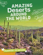 Amazing Deserts Around the World