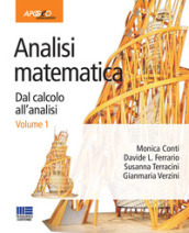 Analisi matematica. Dal calcolo all