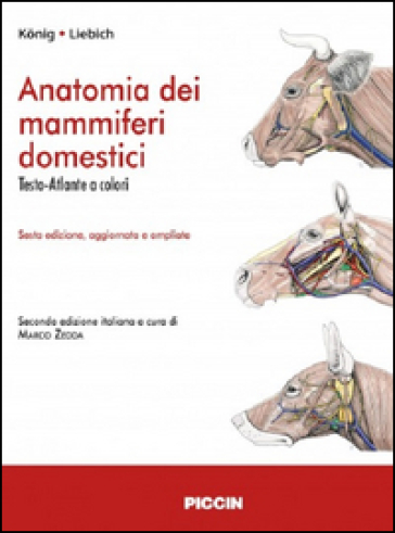 Anatomia dei mammiferi domestici
