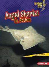Angel Sharks in Action