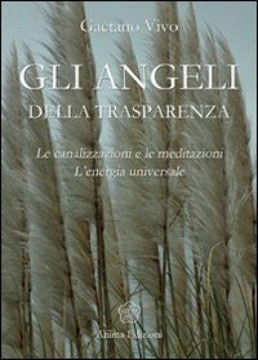 Angeli della trasparenza. Le canalizzazioni e le meditazioni. L'energia universale - Gaetano Vivo |