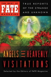 Angels and Heavenly Visitations