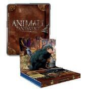 Animali Fantastici E Dove Trovarli (Ltd Cover Pop Up Snaso)(1Blu-Ray)