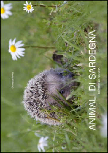 Animali di Sardegna. Dentro la natura. Ediz. italiana e inglese - Giuseppe Sedda |