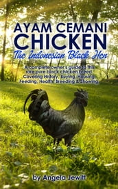 Ayam Cemani Chicken - The Indonesian Black Hen. A complete owner s guide to this rare pure black chicken breed. Covering History, Buying, Housing, Feeding, Health, Breeding & Showing.