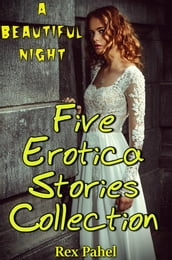 A Beautiful Night: Five Erotica Stories Collection