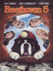 Beethoven 5 (DVD)