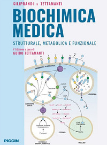 Biochimica medica strutturale metabolica e funzionale - Noris Siliprandi |