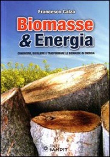 Biomasse & energia. Conoscere, scegliere e trasformare le biomasse in energia - Francesco Calza |
