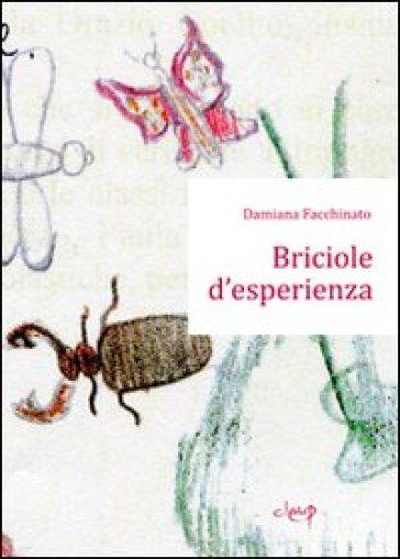 Briciole d'esperienza - Damiana Facchinato   Rochesterscifianimecon.com