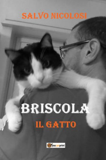 Briscola il gatto - NICOLOSI SALVO  