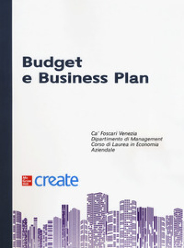Budget e business plan