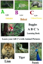 Buggles A B C Learning Book