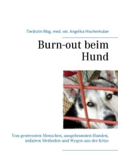 Burn-out beim Hund