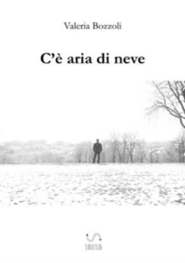 C'è aria di neve - Valeria Bozzoli | Rochesterscifianimecon.com
