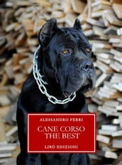 Cane Corso The Best