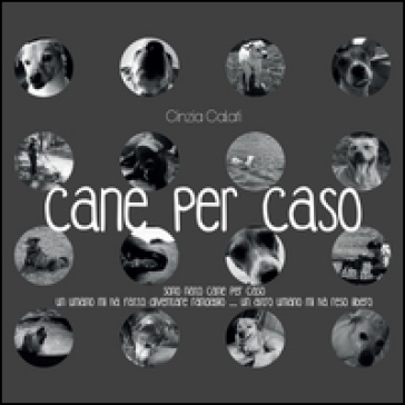 Cane per caso - Cinzia Calati | Kritjur.org