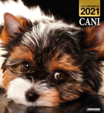 Cani. Calendario 2021   AA.VV. Artisti Vari   Libro   Mondadori Store