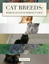 Cat Breeds: Which is Your Perfect Pet?