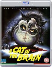 A Cat In The Brain [Edizione: Regno Unito] [ITA]