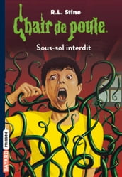 Chair de poule , Tome 17
