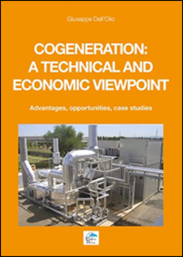 Cogeneration: a technical and economic viewpoint. Advantages, opportunities, case studies