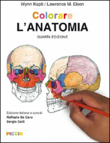 Colorare l'anatomia