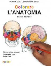 Colorare l'anatomia