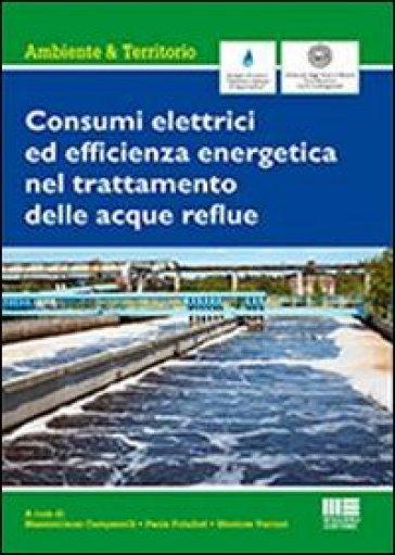 Consumi elettrici ed efficienza energetica del trattamento delle acque reflue - Massimiliano Campanelli   Jonathanterrington.com