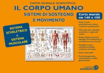 Corpo umano. Muscoli e scheletro. Carta murale