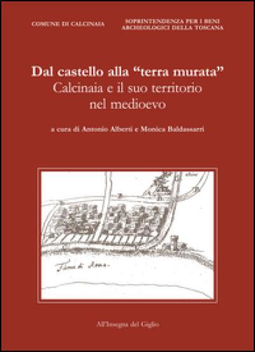 Dal castello alla «terra murata». Calcinaia e il suo territorio nel Medioevo - Arnaldo Alberti  