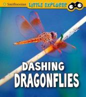 Dashing Dragonflies