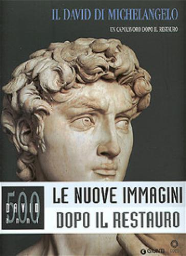 Il David di Michelangelo. Un capolavoro dopo il restauro - Franca Falletti   Rochesterscifianimecon.com