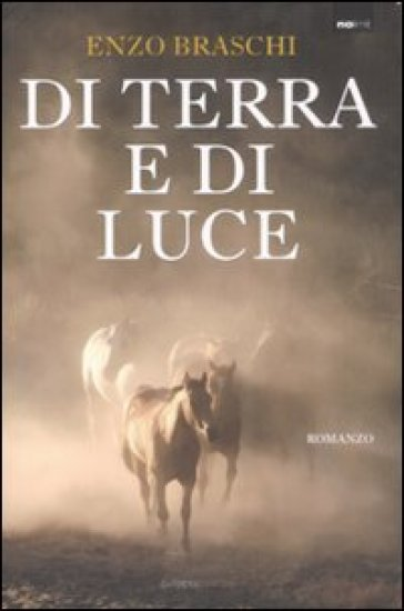 Di terra e di luce - Enzo Braschi (Bisonte Che Corre) | Kritjur.org