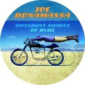 Different shades of blue-picturedisc