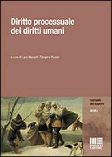 Diritto processuale dei diritti umani - Luca Mezzetti |