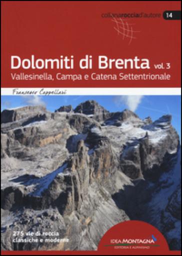 Dolomiti di Brenta. 3: Vallesinella, Campa e Catena Settentrionale - Francesco Cappellari | Jonathanterrington.com