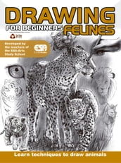Drawing For Beginners (Felines)