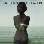 Dubstep side of the moon