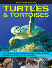Exploring Nature: Turtles & Tortoises